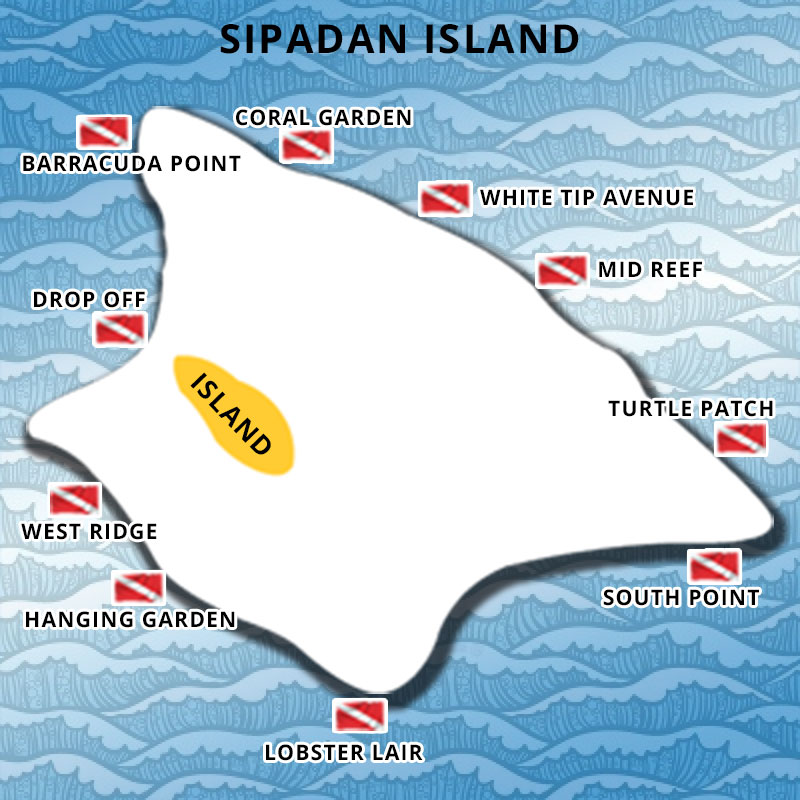 Diving Point of Sipadan Island